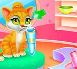 Cute Pets Caring And Dressup