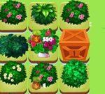 Merge Plants